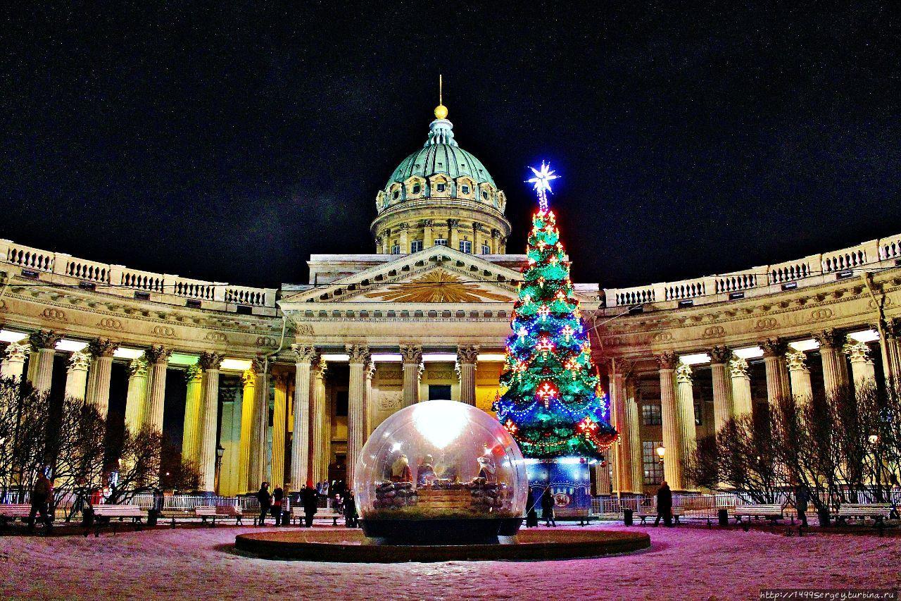 Зимняя сказка в Северной столице